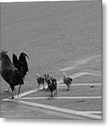 Aint Chicken Metal Print by Sean Green