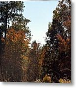 Alabama Mountainside October 2012 Metal Print