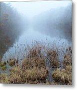 Alcotts Pond In Fog Metal Print