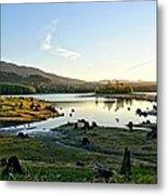 Alder Lake Wa At Sunset Metal Print