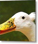 Alfalfa The Duck Metal Print