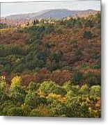 Algonquin In Autumn Metal Print