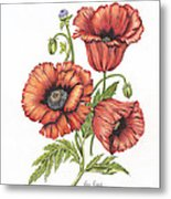 All About Poppies Metal Print