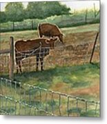 All Aglow Metal Print