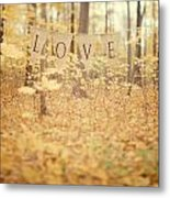All Is Love Metal Print