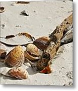 All Washed Up Metal Print
