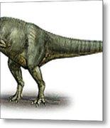 Allosaurus Fragilis, A Prehistoric Era Metal Print