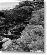 Alone Time Bw Metal Print