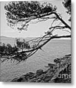 Alone Watching The Sea Metal Print