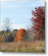 Alone With Autumn Metal Print