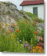Along The Coast Of Maine Metal Print