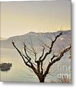 Alpine Lake With Islands Metal Print
