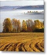 Altai Foothills Metal Print