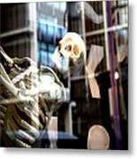 Always Out There But You Cannot See Us Metal Print