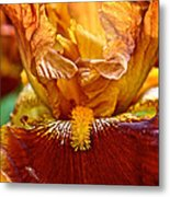 Amber Stripes Metal Print