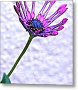 Amethyst Sapphire And Gold Metal Print