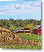 Amish Cornfield Metal Print