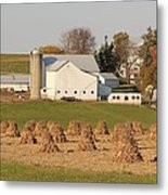 Amish Countryside Metal Print
