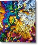 Ampicillin Lm Metal Print
