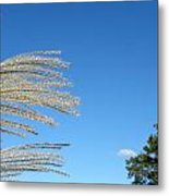 An Easterly Flow Metal Print