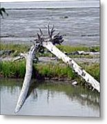 Anchorage In August Metal Print