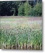 Anchorage In Summer Metal Print