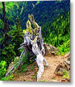 Ancient And On The Edge Metal Print