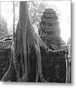 Ancient Temple With Strangler Fig Metal Print