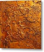 Ancient Treasure 2 Metal Print