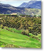 Andalusia Landscape Metal Print