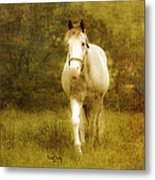 Andre On The Farm Metal Print