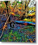 Andy River 13 Metal Print