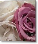 Angel Face Rose Metal Print