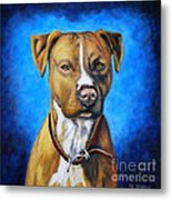 American Staffordshire Terrier Dog Painting Metal Print