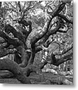 Angel Tree II Metal Print