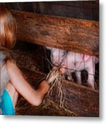 Animal - Pig - Feeding Piglets  Metal Print