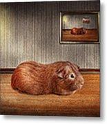 Animal - The Guinea Pig Metal Print by Mike Savad