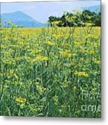 Anise To The Mountains Metal Print