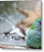 Another After The Bath Metal Print