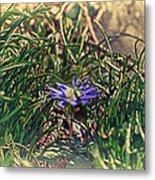 Antiquated Flower Metal Print