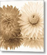 Antique Floral Duo Metal Print
