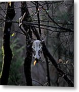 Antlers - Skull - In The Air Metal Print