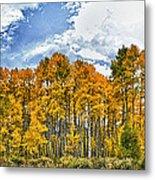 Apen Trees In Fall Metal Print