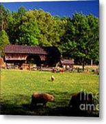 Appalachian Barn Yard Metal Print