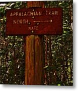 Appalachian Trail Metal Print by Sarah Buechler