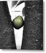 Apple Tree Metal Print