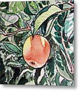 Apple Tree Sketchbook Project Down My Street Metal Print