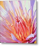 Aquatic Bloom Metal Print