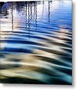 Aquatic Reflections Metal Print