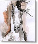 Arabian Horse Ink Drawing 2 Metal Print